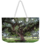 A Place In The Sun Weekender Tote Bag by Terry Reynoldson