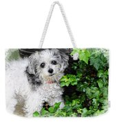 A Portrait Of Tiny Weekender Tote Bag