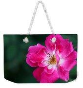 A Pretty Pink Rose Weekender Tote Bag