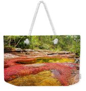 A Red And Yellow River In Colombia Weekender Tote Bag