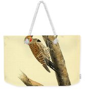 A Red Moustached Woodpecker Weekender Tote Bag by Philip Ralley
