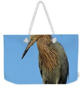 A Redhead On A Roof Weekender Tote Bag