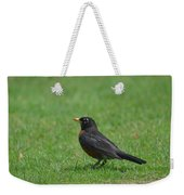 A Robin In June Weekender Tote Bag