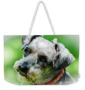 A Schnoodle A Schnauzer Weekender Tote Bag