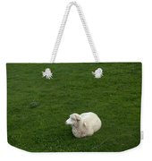 A Sheep Stands In A Green Prairie Weekender Tote Bag