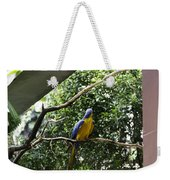 A Single Macaw Bird On A Branch Inside The Jurong Bird Park Weekender Tote Bag