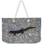 A Slow Salamander  Weekender Tote Bag
