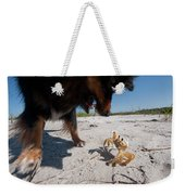 A Small Dog Fights With A Crab Weekender Tote Bag