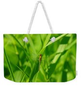 A Small Dragonfly Weekender Tote Bag