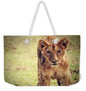 A Small Lion Cub Portrait. Tanzania Weekender Tote Bag