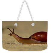 A Snails Pace Weekender Tote Bag