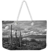 A Sonoran Winter Day In Black And White  Weekender Tote Bag