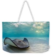A Southern Stingray Weekender Tote Bag