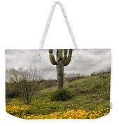A Southwestern Style Spring Weekender Tote Bag
