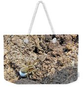 A Spider With The Egg Sack Weekender Tote Bag