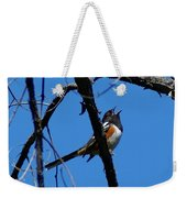 A Spotted Towhee Mid-song Weekender Tote Bag