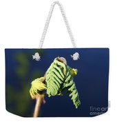 A Spring Beginning  Weekender Tote Bag