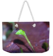 A Sprout Lifting A Waterdrop Weekender Tote Bag