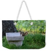 A Squirrel's Day Out Weekender Tote Bag