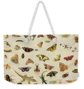 A Study Of Insects Weekender Tote Bag
