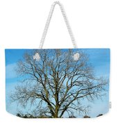 A Tree In Fall... Weekender Tote Bag
