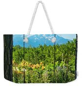 A Tree Swing Is Seen On A Summer Day Weekender Tote Bag