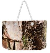 A Treetrunk Abstract Weekender Tote Bag