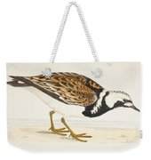 A Turnstone. Arenaria Interpres. From A Weekender Tote Bag