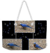 A Typical Eastern Bluebird's Lunch - Featured In Comfortable Art Group Weekender Tote Bag