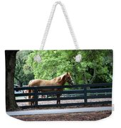 A Very Beautiful Hilton Head Island Horse Weekender Tote Bag