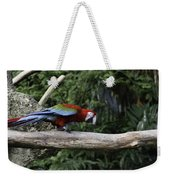 A Very Colorful And Bright Macaw Bird Perched On A Branch Weekender Tote Bag