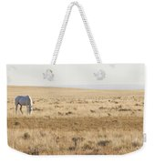 A White Mustang Feeds On Dry Grass Fields Of Arizona Weekender Tote Bag