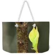A Winter Sprout Weekender Tote Bag