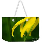 A Woman Passes By Weekender Tote Bag