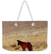 A Young Mustang Weekender Tote Bag