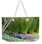 Aahh Spring Break Weekender Tote Bag