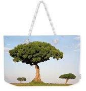 Acacia Trees Masai Mara Kenya Weekender Tote Bag