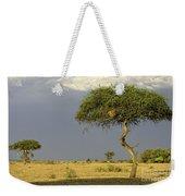 Acacia Trees On Serengeti Weekender Tote Bag