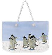 Adelie Penguin Group Running Antarctica Weekender Tote Bag