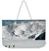 Adelie Penguins At Cape Hallett Weekender Tote Bag