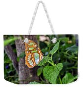 Admiring The Garden Weekender Tote Bag