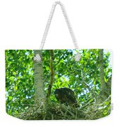 Adolescent Eagle Eating A Fish Weekender Tote Bag