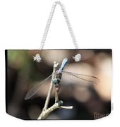 Adorable Dragonfly With Border Weekender Tote Bag