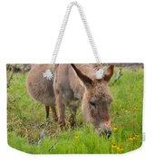 Adorable Mini-burro Weekender Tote Bag