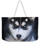 Adorable Siberian Husky Sled Dog Puppy Weekender Tote Bag