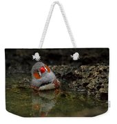 Adorable Zebra Finch Taking A Bath Weekender Tote Bag