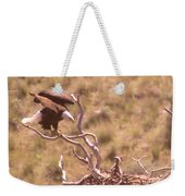 Adult Eagle With Eaglet  Weekender Tote Bag