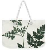 Aethusa Cynapium From Phytographie Weekender Tote Bag