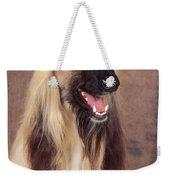 Afghan Hound Dog, Portrait Weekender Tote Bag