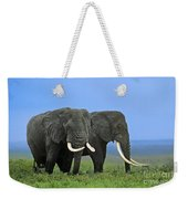 African Bull Elephants In Rain Endangered Species Tanzania Weekender Tote Bag